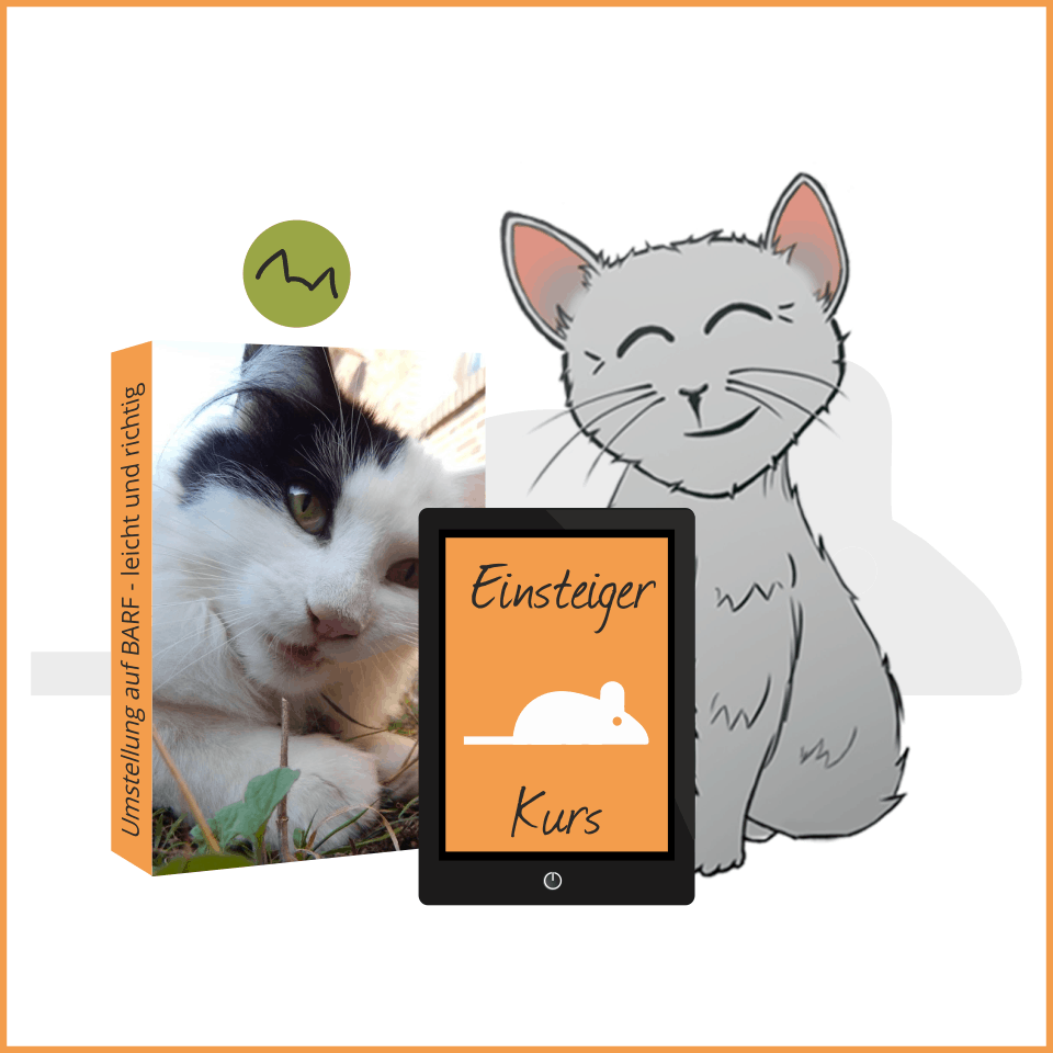 BARF Einsteiger Kurs Icon mit Katze