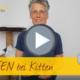 BARFen für Katzen kitten