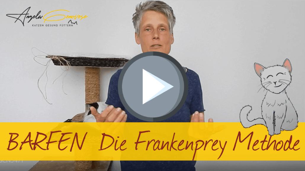 barfen für katzen die frankenprey methode