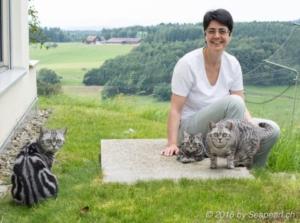 Foto von Anja Wegmanns Katzen